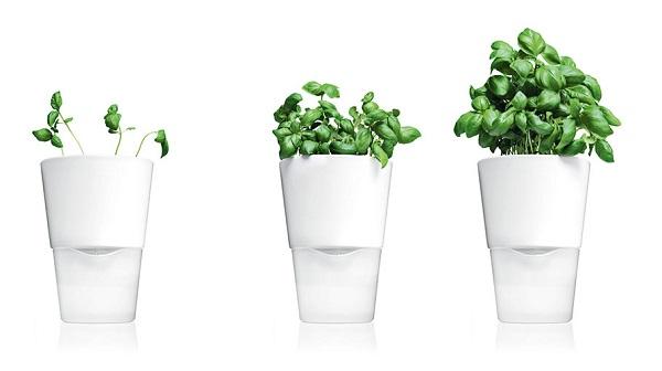 eva-solo-urtepotte-hvit