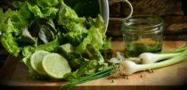 Salatslynge – Én Salatslynge blir Stadig «Best i Test»